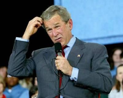 Confused-Bush