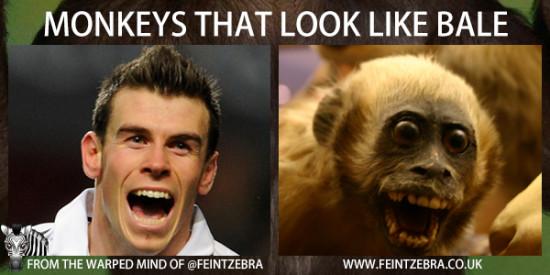 monkeys-that-look-like-bale-02-550x275