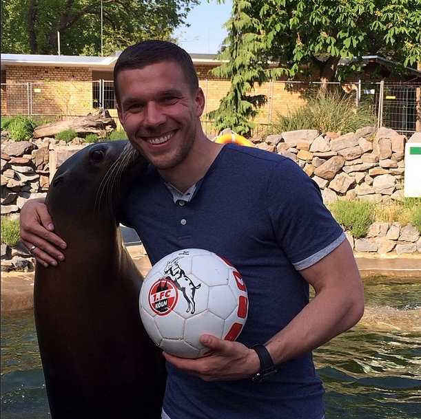 poldi-sea-lion